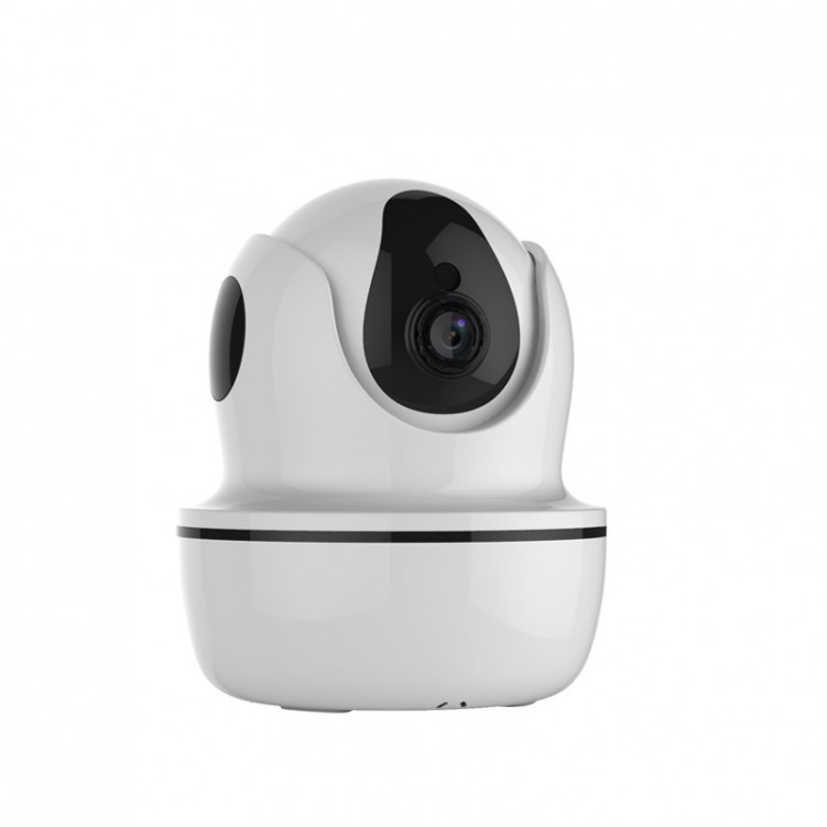 Infrared Control Function Wireless Network Camera D26S