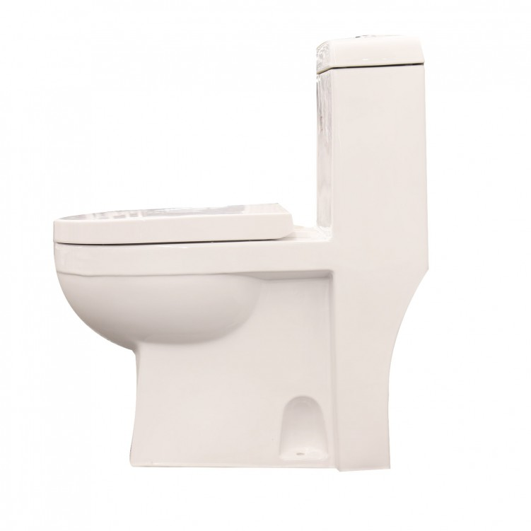 Saso Washdown One Piece Ceramic S-TrapToilet