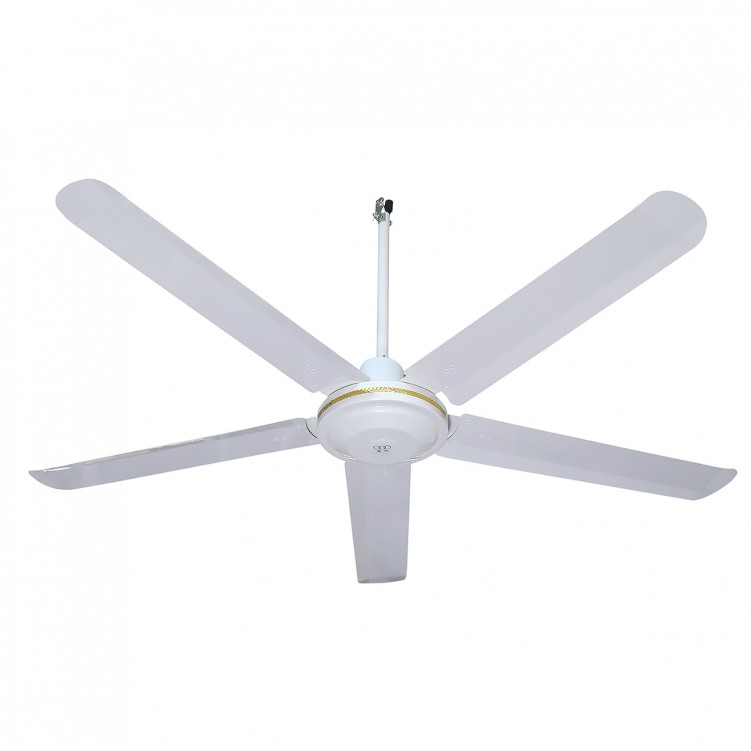 Ceiling Fan With Five Iron Blades ,White Color
