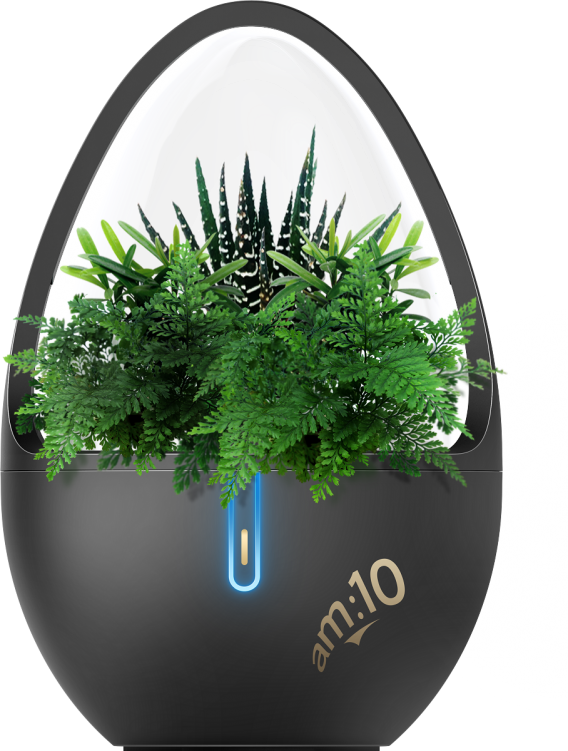 Natural Essential Oil Aroma Diffuser