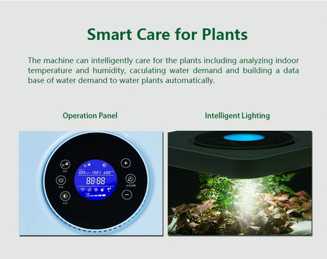 6 Layered System Plant Purification Air Purifiers