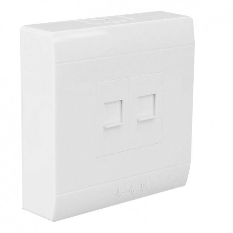 Double Internet Socket Outlet