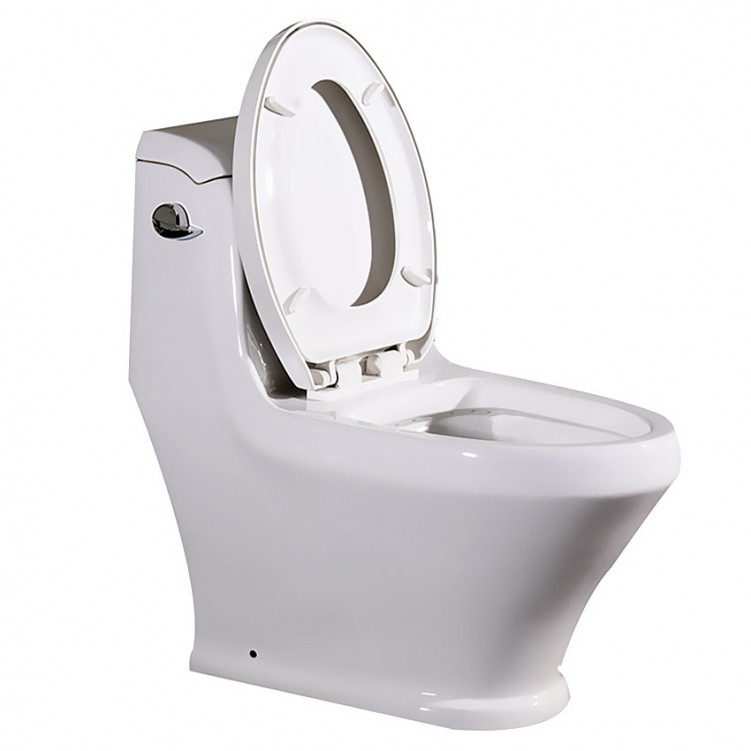 EAGO Modern Style One piece Ceramic Siphonic 5L Single Flushing Toilet