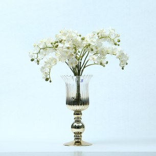 Hurricane Glass Vase/Candle Holder