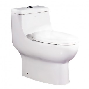 EAGO Dual Flush One Piece Ceramic Watersense Water Closet