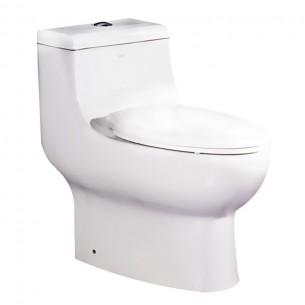 EAGO Dual Flush One Piece Ceramic Watersense Water Closet