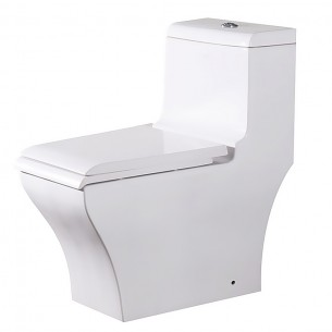 EAGO Siphonic One Piece Toilet Ceramic Floor Mount Toilet Water Closet